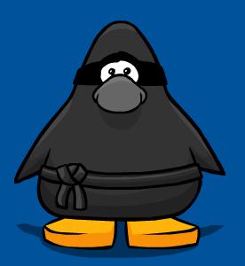 1 club penguin ninja